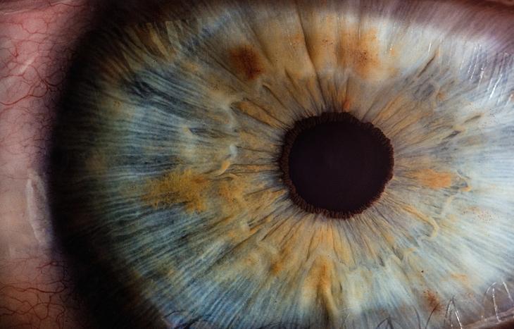 Gandalf`s eye