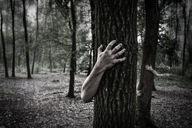 Hands on trees