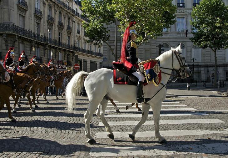 Cavalry procession